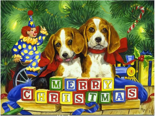 Patch beagles pictures at christmas